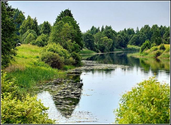 Река Нерль у трассы