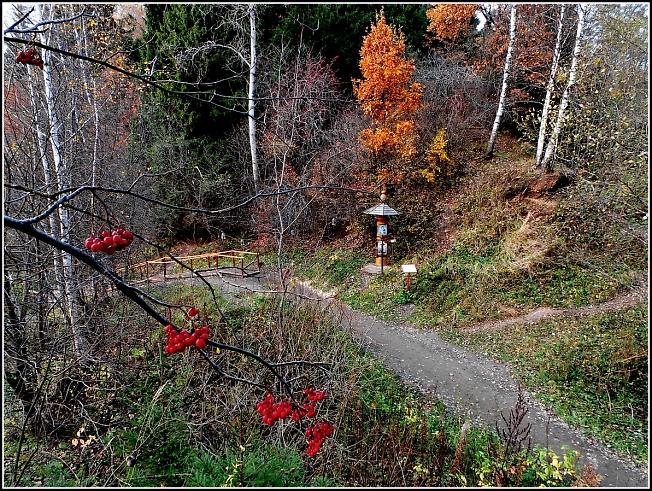Дорога на источник близ Зубцово