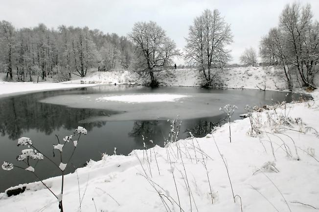 Новогодний пруд.