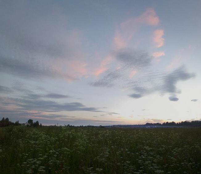 Летний вечер