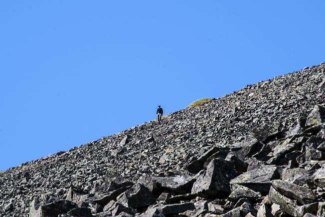 Путь с вершины