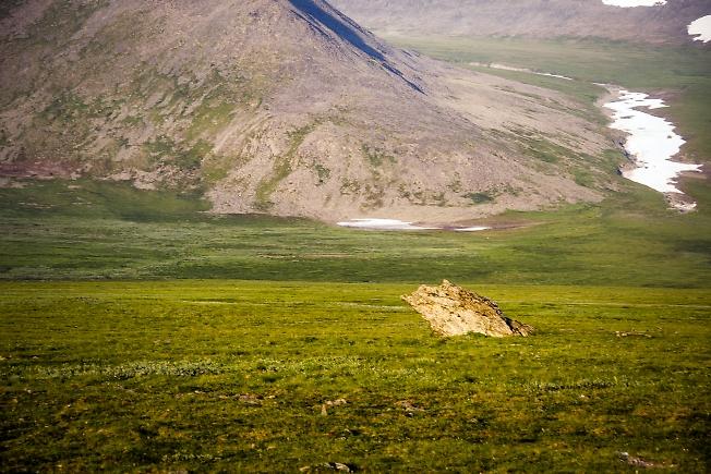 Одинокая скала
