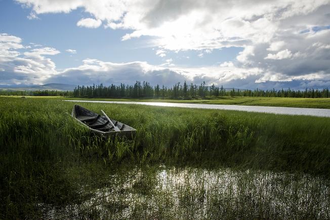 Лодка в траве