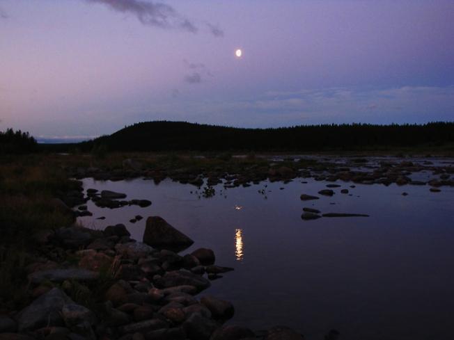 Белая лунная ночь 2