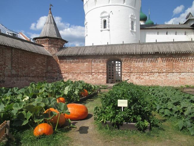 Огород в Митрополичьем саду