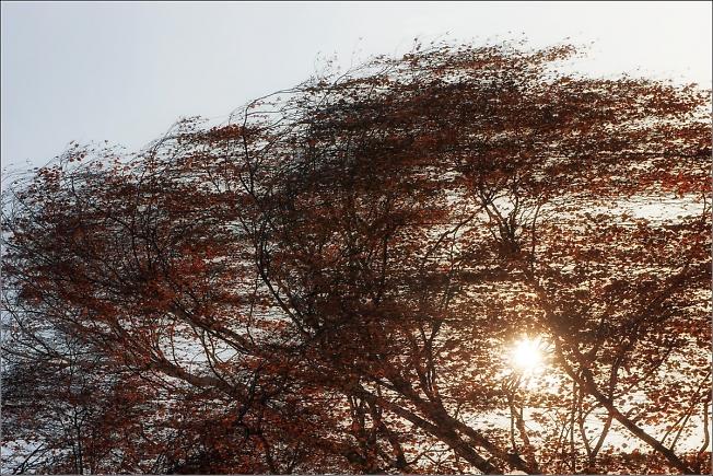 Солнечный ветер