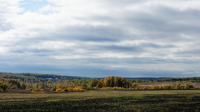 Золотая осень. Южное подмосковье