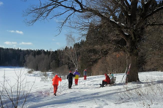 Лыжники на озере