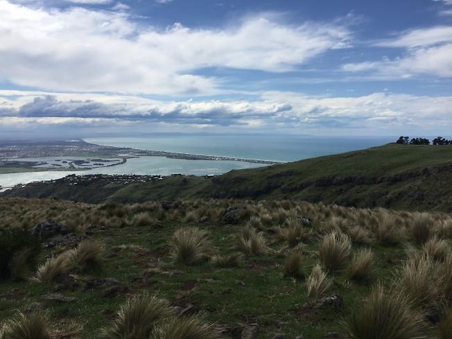 Новозеландские картинки -1