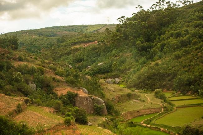 Мадагаскарский пейзаж