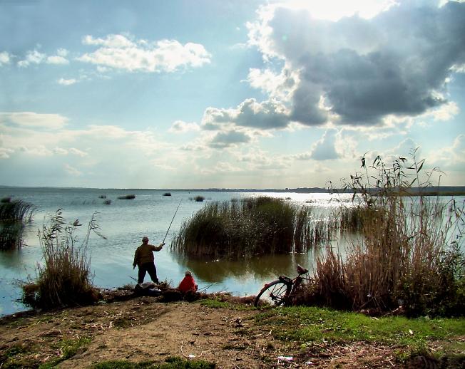 Платная рыбалка Хомяково в СергиевоПосадском районе