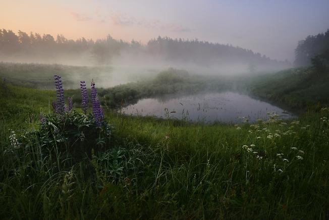 Прогулки на восходе. Киржач.