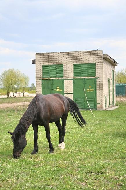 1 лошадиная сила = 0,736 кВт