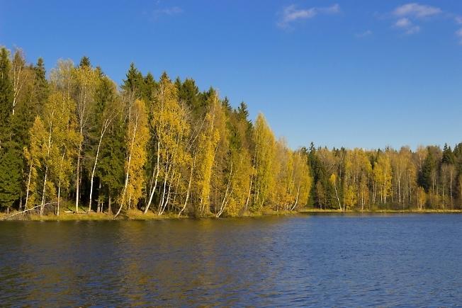 рыбалка озеро лесное сергиев посад рыбалка