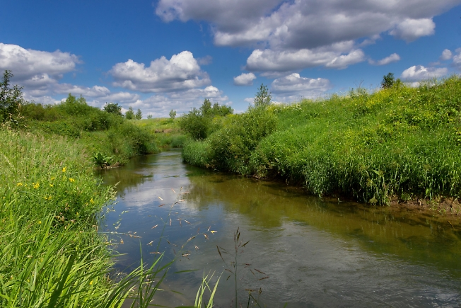 Спокойная речка