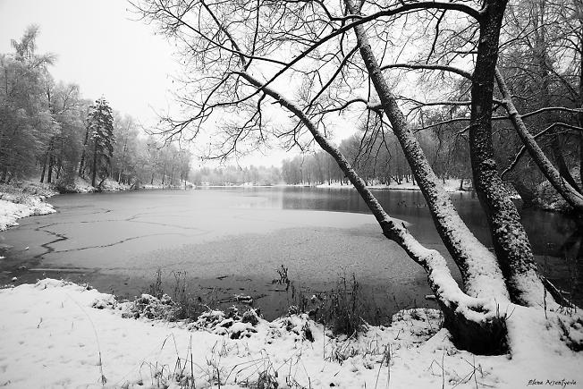 Скитский пруд