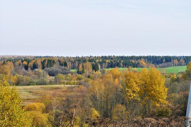 Леса и просторы