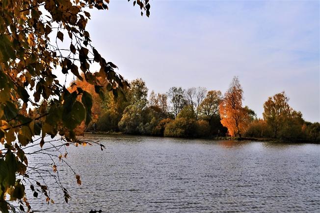 Красочная осень