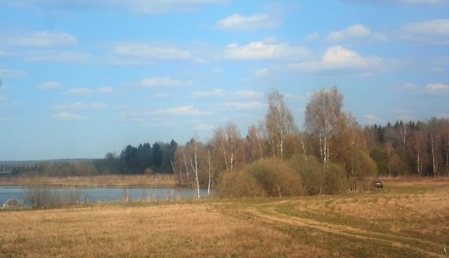 Березовый край